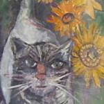Colmar cat I