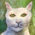 Le chat de Cédric