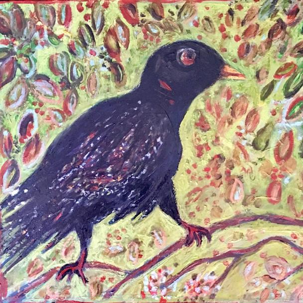 Oiseau noir
